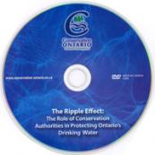 ripple-effect-dvd